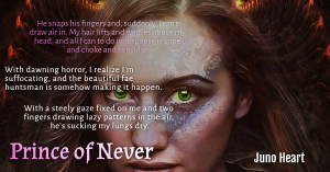 Prince of Never Excerpt