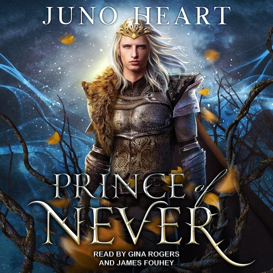 Prince of Never audio book. Fairy prince human girl romance audiobook.